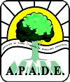 apade-epilepsia
